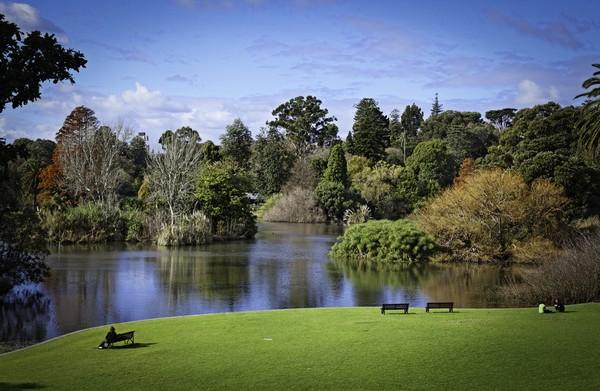 Rpyal botanic gardens Sydney
