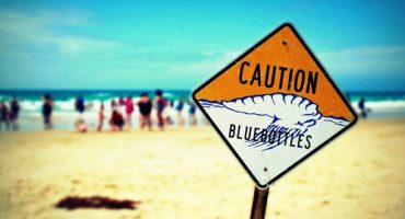 World's Most Dangerous Beaches