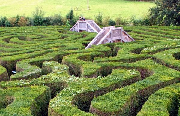 Longfleat maze