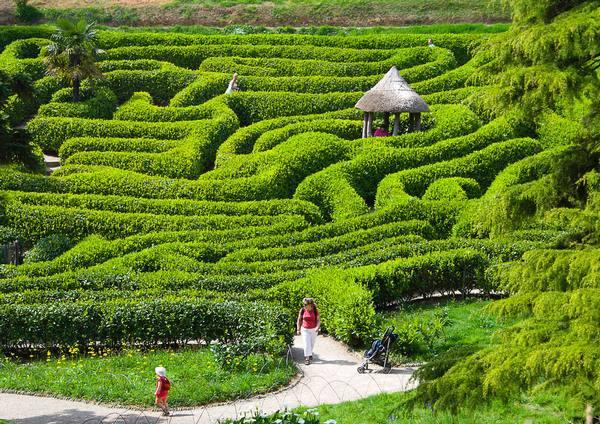 hertford maze