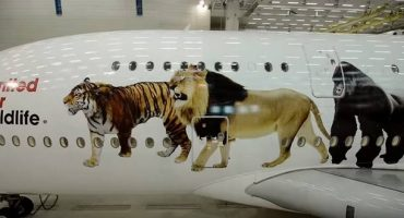 Emirates super jumbo jet has a strong message about the wildlife trade