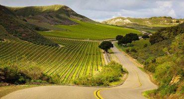 Discover California's classic wine trails