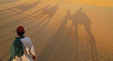 Scorching: India records highest temperatures ever