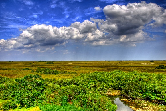 A view over Everglades National Park, Florida