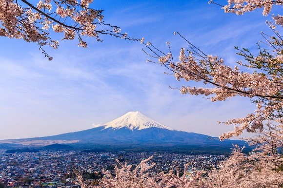 Mount Fuji and blossom in Japan