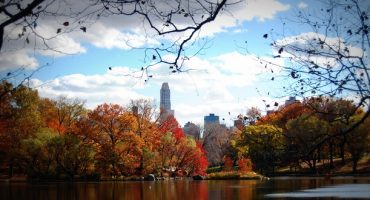 Jet off on a fall vacation with these great fares from Virgin America!