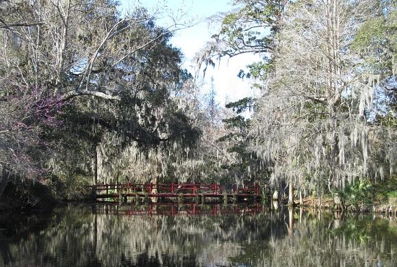 Magonlia garden and plantation Charleston