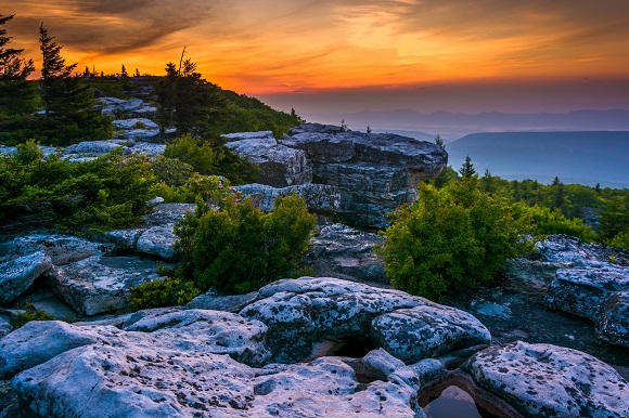Bear Rocks Preserve, Dolly Sods Wilderness