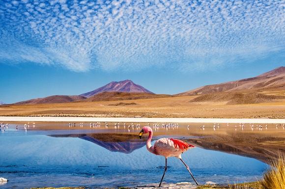 Ruta de las Joyas altoandinas, Bolivia