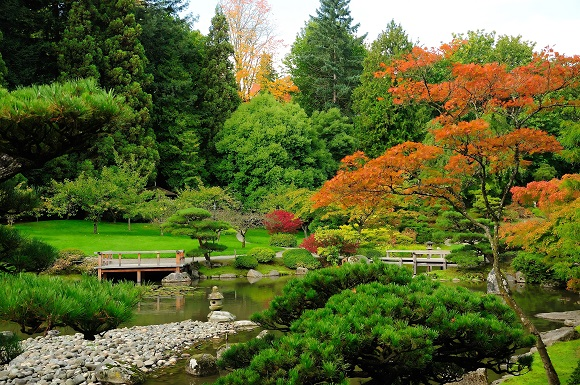Japanese Garden in Seattle