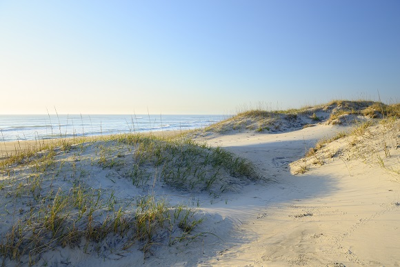 Cape Hatteras Sand Dunes