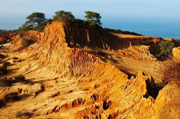 San Diego Torrey Pines
